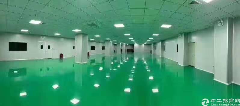 新出标准独栋二层共2000平方,带地坪漆,可环评,价格美丽