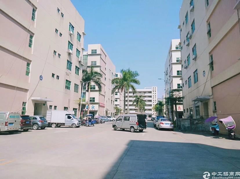 石岩原房东精装实际面积2065平出租
