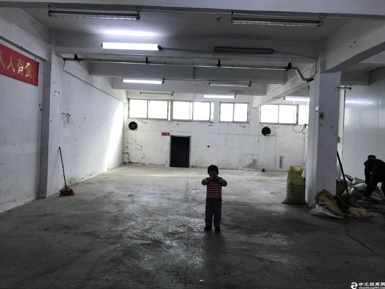 坪山靠近龙岗新出一楼550平米红本厂房出租