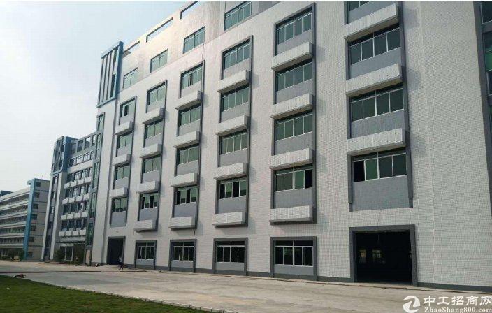 惠州大亚湾668㎡层红本标准厂房按层出售可分可按揭
