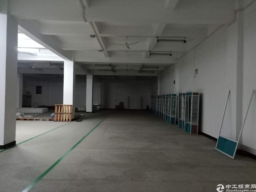 观澜章阁原房东600平米仓库出租