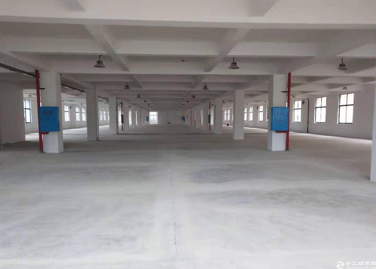 独门独院厂房2000-14000出租