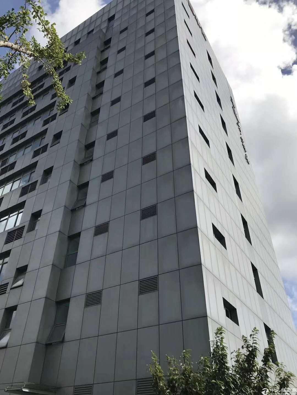 近九亭地铁站精装修办公室带办公家具10平起底价出租