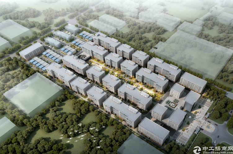 300至6000㎡标准厂房可分层正规园区产权清晰