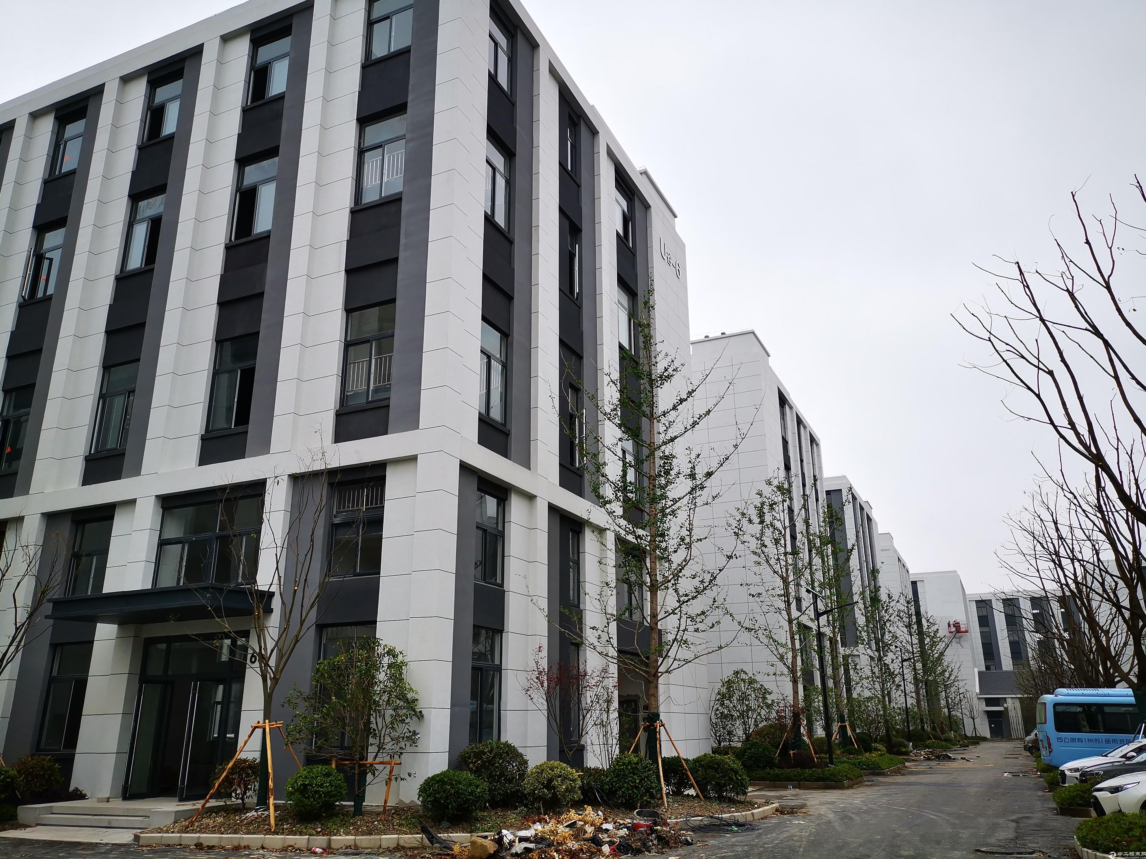 全新大气厂房出租,800平精致户型