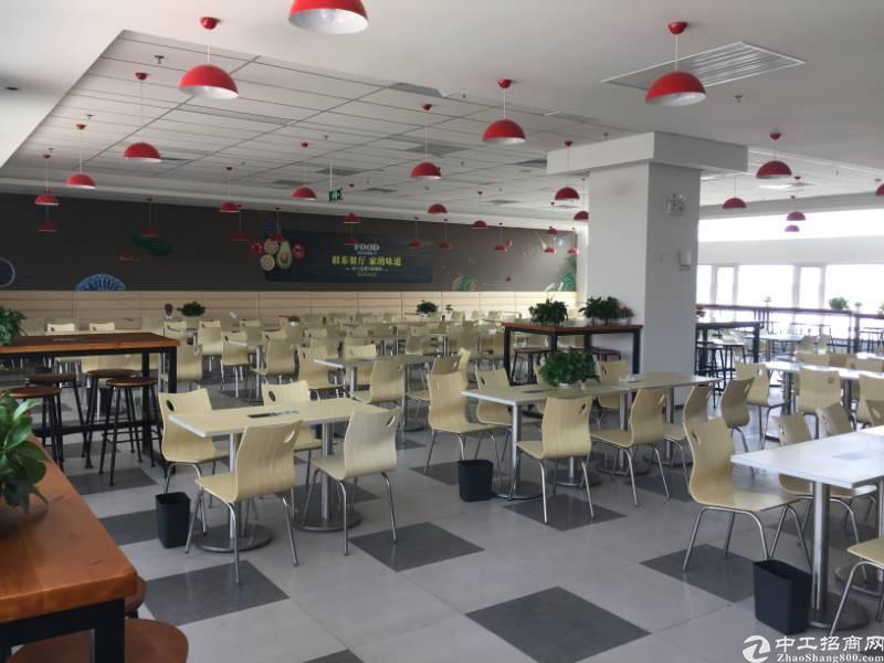 黄岛保税区层高8.1米独栋厂房出售可按揭做低首付