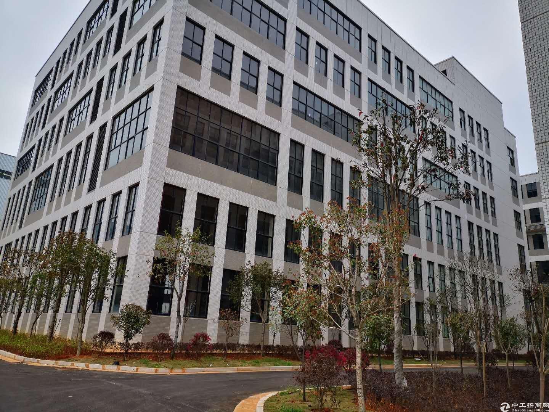 金荣企业公园650平标准厂房,企业独栋出售