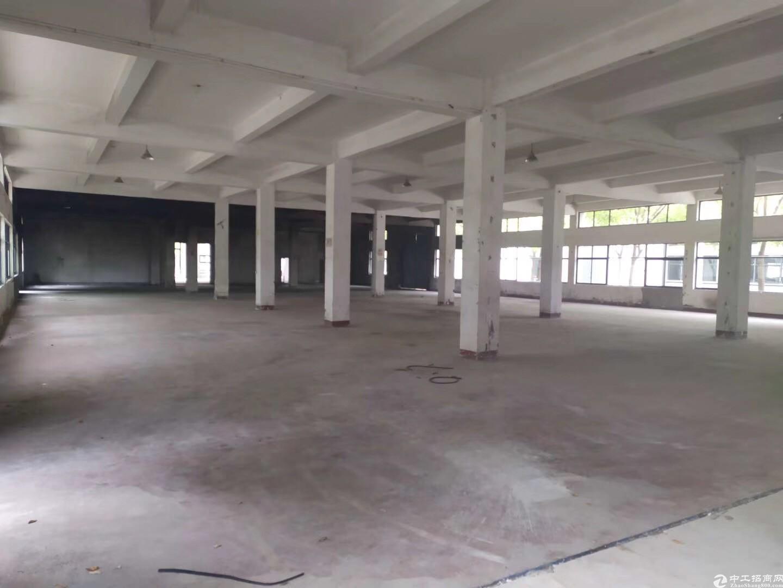 开发商直售独栋三层厂房单层1000平价格优惠上海周边