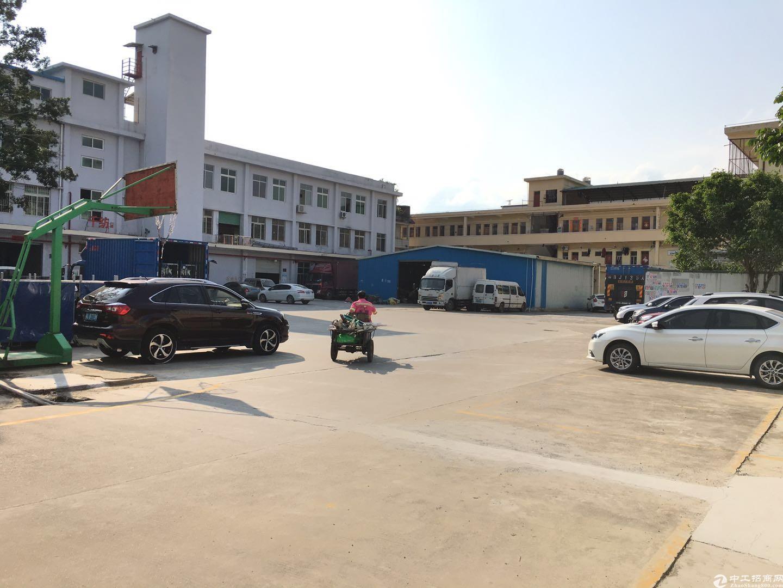 坪山石井工业区路边250平米仓库厂房出租,交通方便
