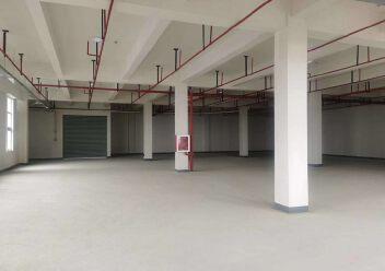 正规工业园出售600-8000平米独栋办公楼厂房图片6