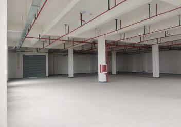 正规工业园出售600-8000平米独栋办公楼厂房图片3