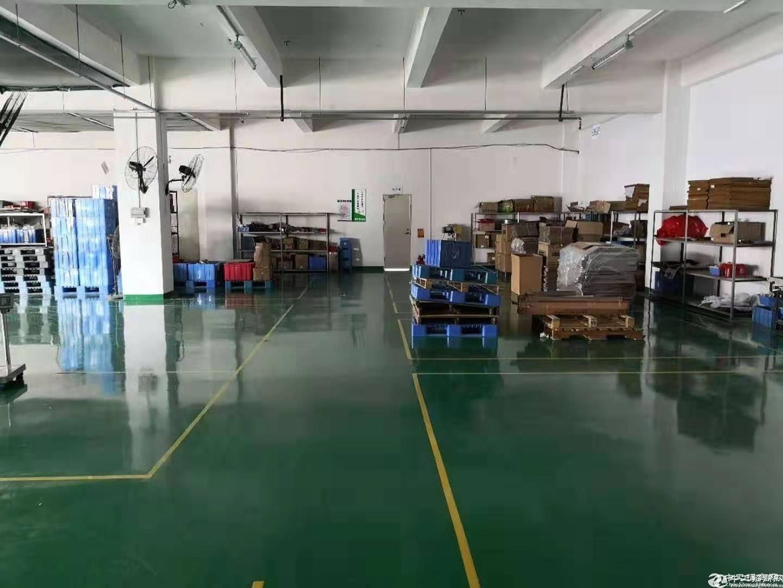 公明玉律第二工业区原房东独院5000平米实际面积招租.-图2