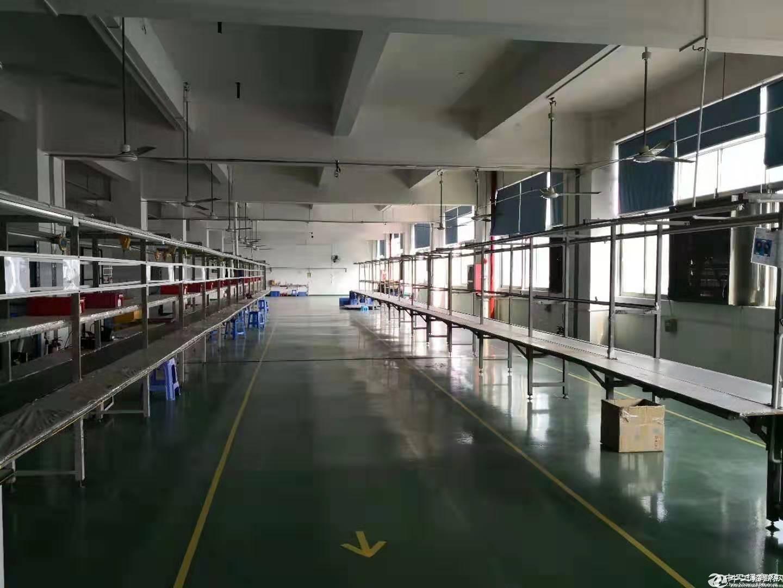 公明玉律第二工业区原房东独院5000平米实际面积招租.-图3