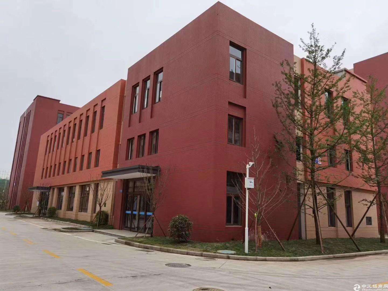 双流优质稀缺框架独门独院全新厂房仓库面积可分割