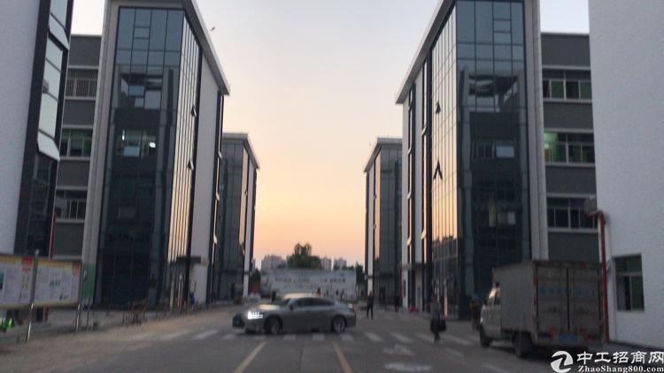 龙岗南联全新产业园200至1000平方厂房办公室仓库宿舍招租