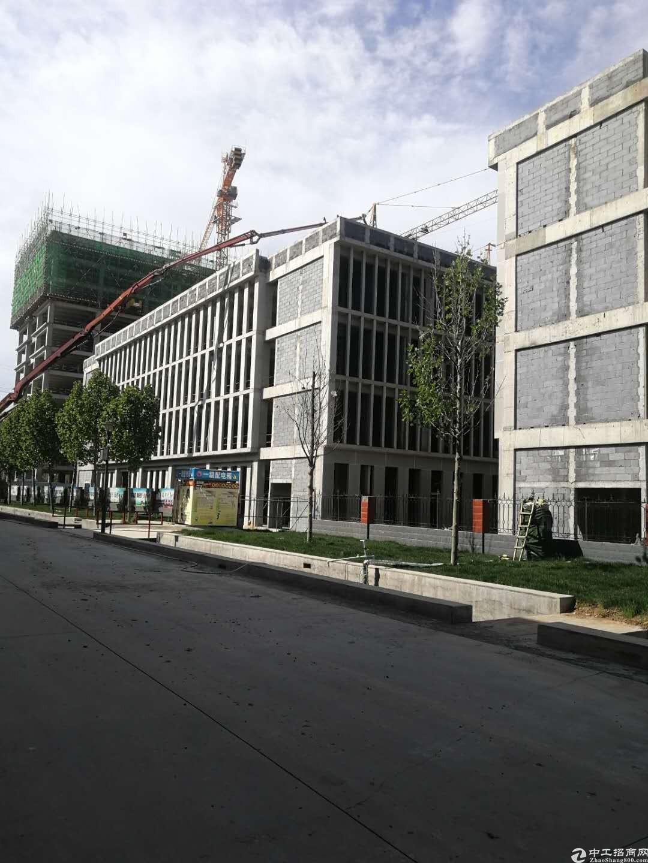 大学城产业园轻轨R1线附近写字楼出售现房即买即用-图4