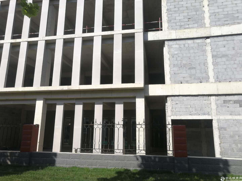 大学城产业园轻轨R1线附近写字楼出售现房即买即用-图5