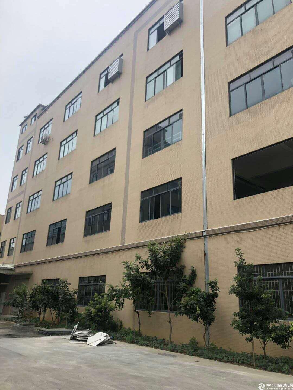 广州增城占地4700㎡建筑2500㎡全新国有双证厂房出售-图3