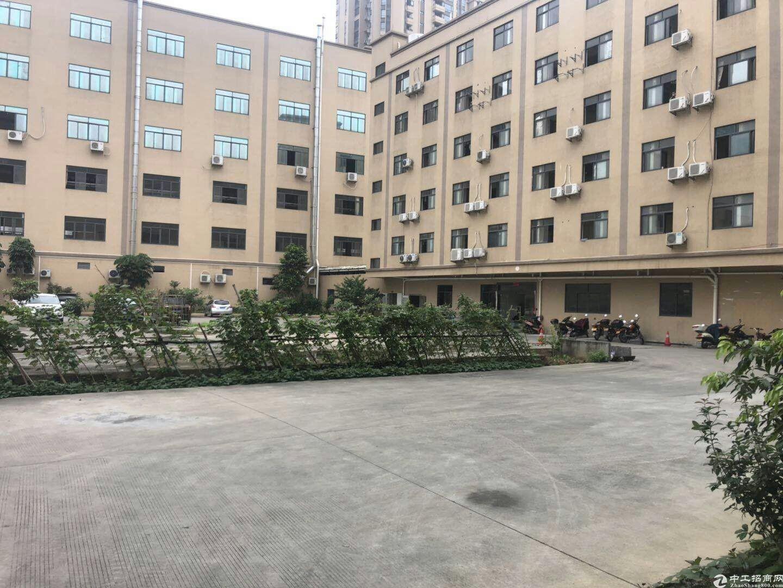 广州增城占地4700㎡建筑2500㎡全新国有双证厂房出售-图2