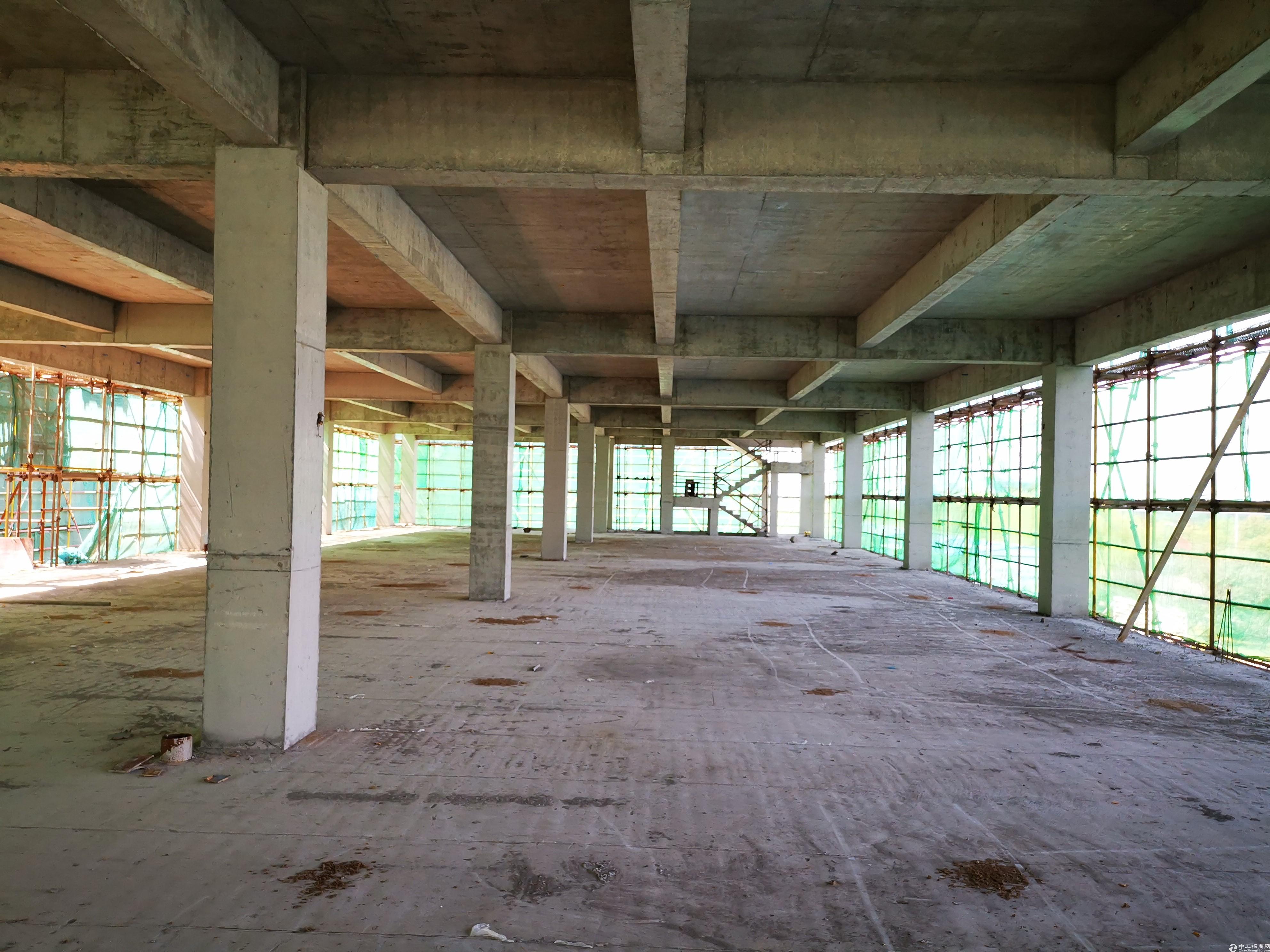 相城全新全新厂房2000平,50年产权可按揭