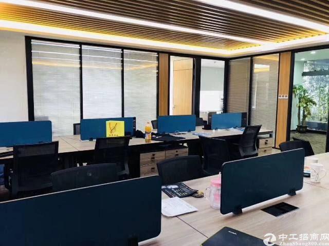 深圳北站地铁口原房东红本写字楼336平55元豪华装修图片2