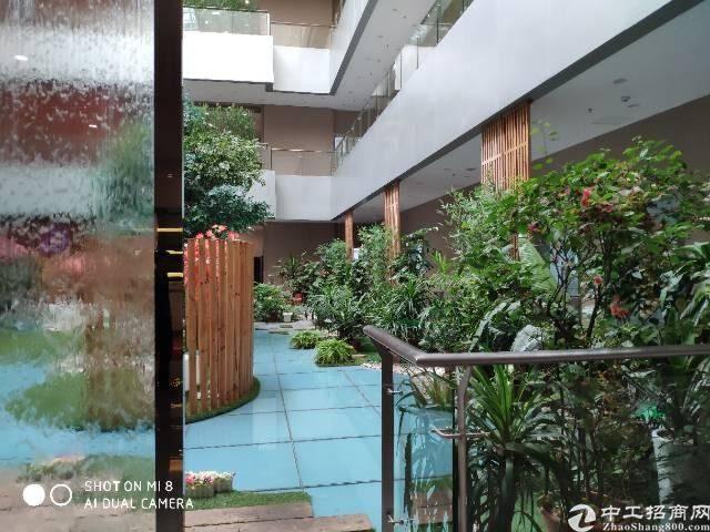 深圳北站地铁口原房东红本写字楼336平55元豪华装修图片7