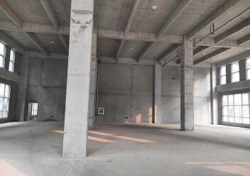 两层独栋厂房出售1500平米,层高7.9米,送阳台图片5
