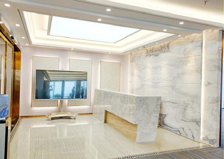 宝安中心区,易尚中心,精装505平,双面采光电梯口图片1