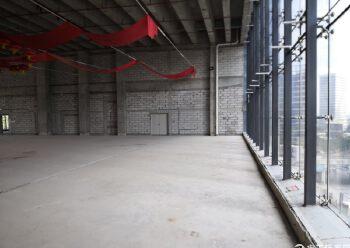布吉南湾层高六米写字楼2100平米出售图片3