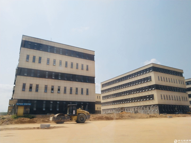 端州双龙1800㎡独栋厂房出售首层高8.1米