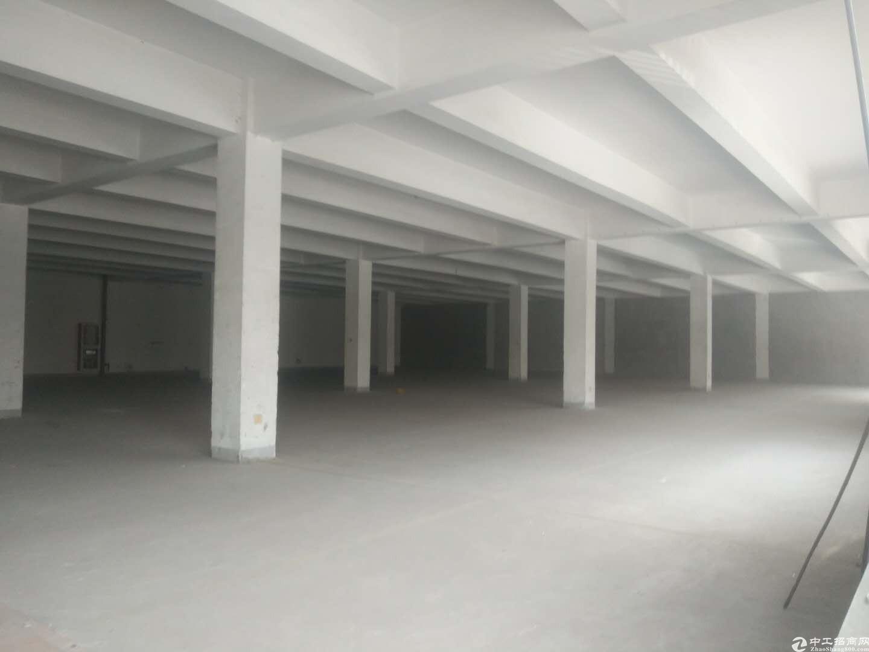 苏州新区枫桥底楼3000平标准厂房交通便利可生产仓储