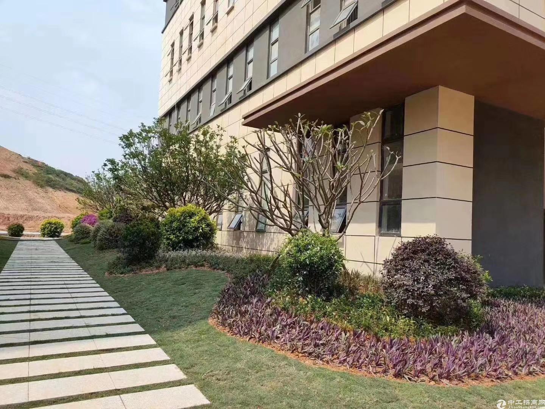 端州双龙1800㎡独栋厂房出售首层高8.1米-图2