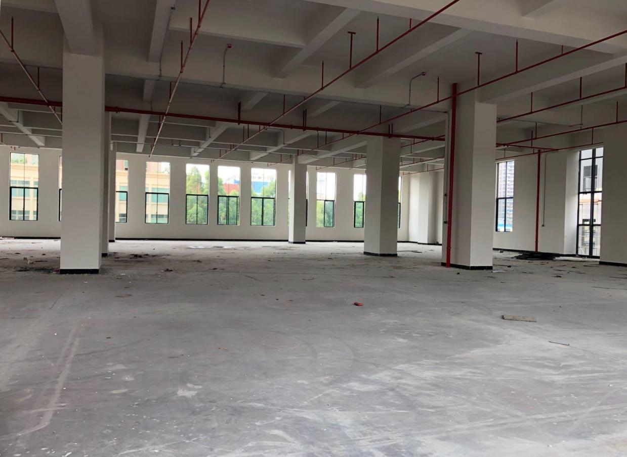 全新厂房3300平米低价出租灵活分割