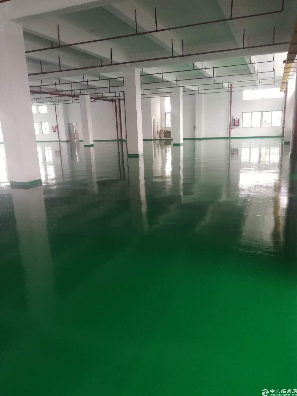 坪山深汕路边高新园区楼上3200方出租全新地坪漆办公室装修