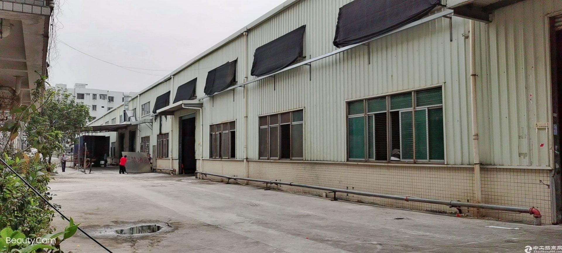 惠阳镇隆9米高单一层独门独院万博app官方下载3900平米出租带装修