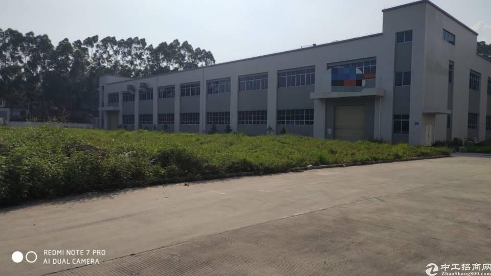 惠州镇隆村委地1.2万㎡钢构厂房8千㎡售1.6千万34年
