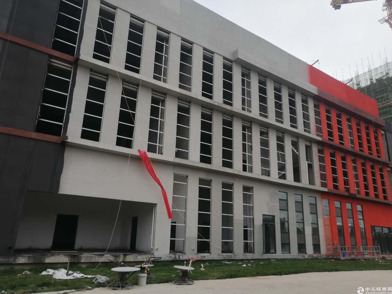 大学城附近现房独栋生产办公办学研发多种需求-图3