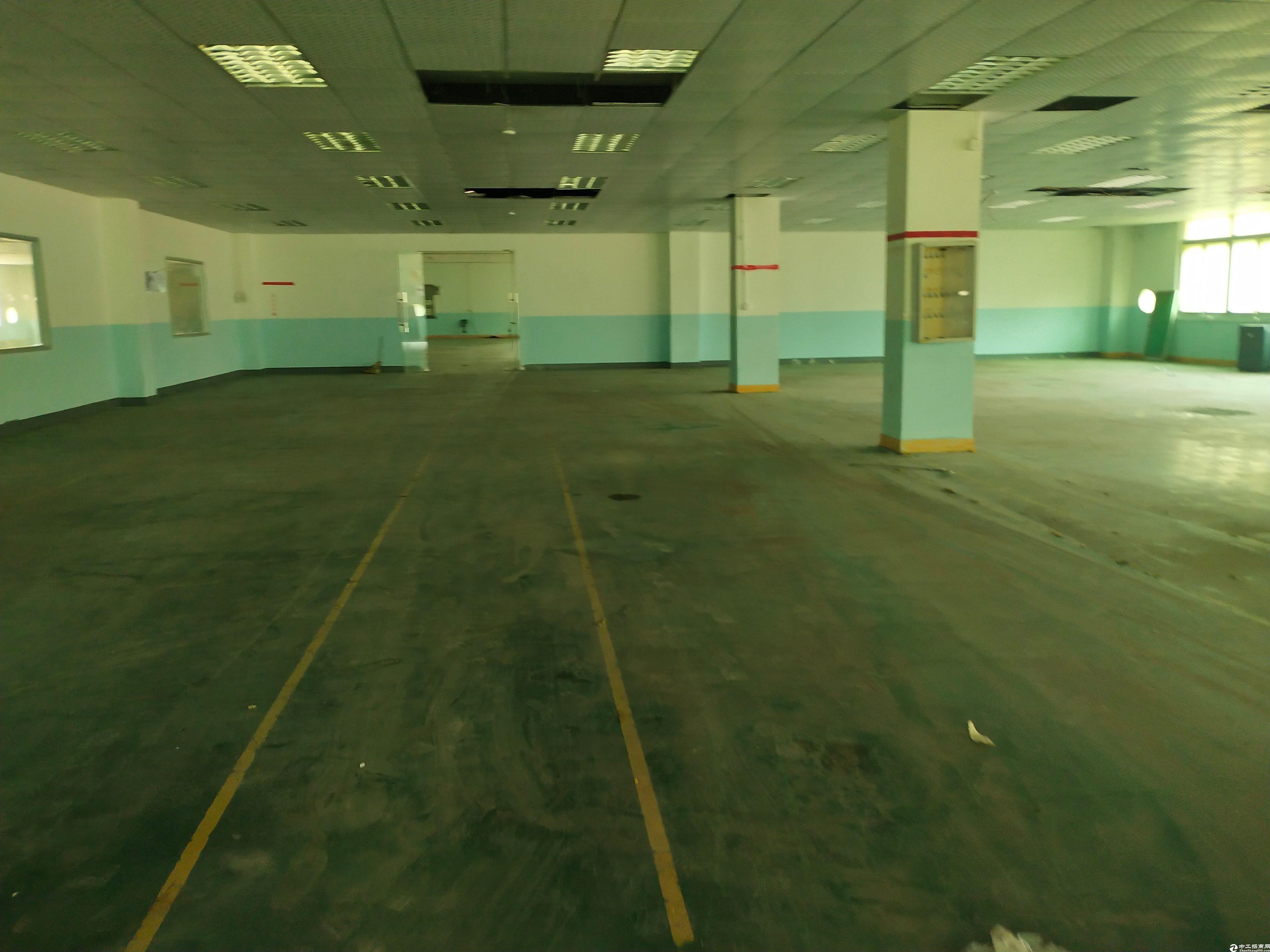 惠阳新圩镇小碧红本厂房二楼900平厂房出租.精装修