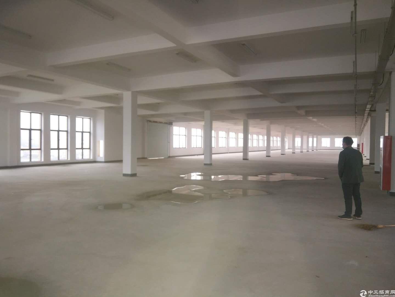 临安高虹工业园一楼层高5米,面积1200方,证件齐全