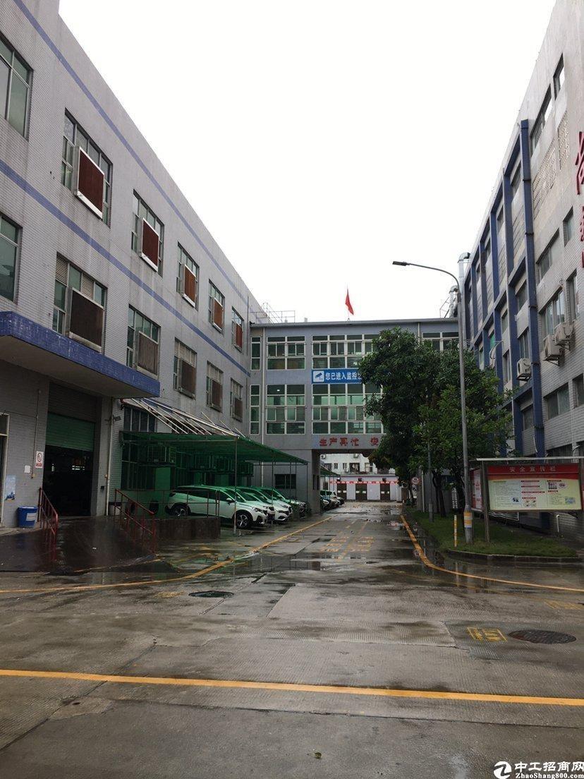 惠阳镇隆楼上整层2850平米精装修红本厂房出租.