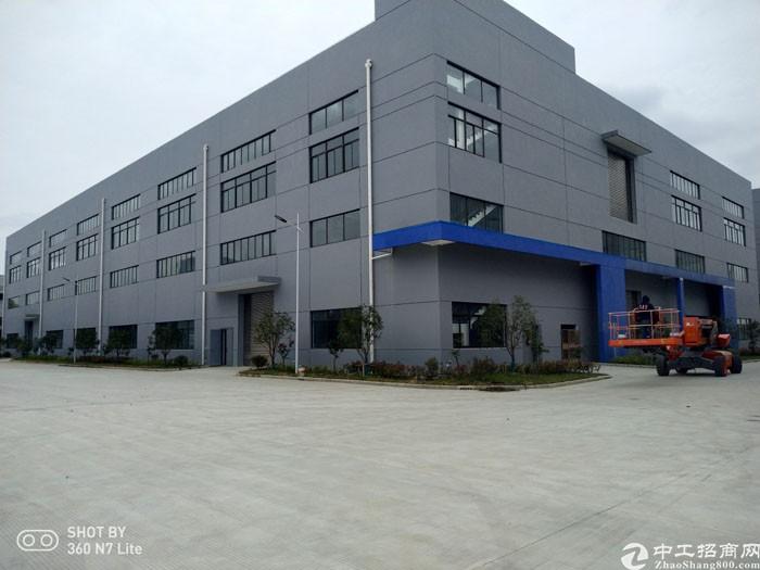 周市57000平米标准单/双层厂房出租可分租