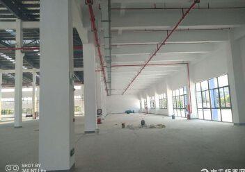 周市57000平米标准单/双层厂房出租可分租图片5