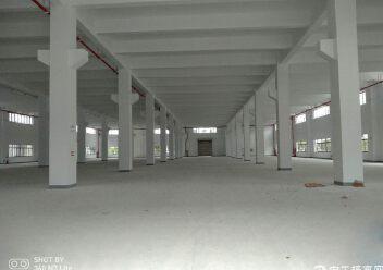 周市57000平米标准单/双层厂房出租可分租图片6