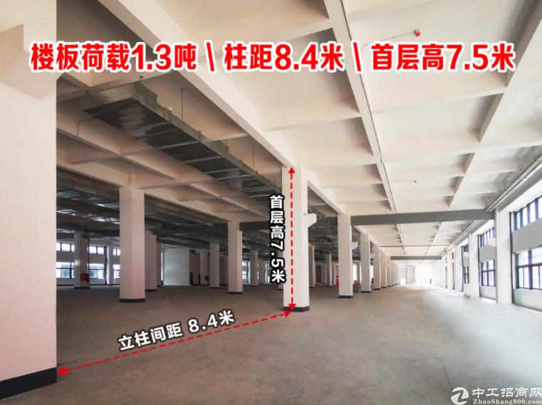 高要金利镇全新标准厂房5层带电梯可分租-图2