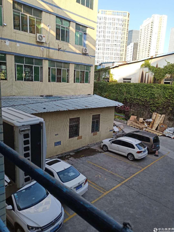 平湖工业园新出300平一楼厂房仓库出租可按需求分租