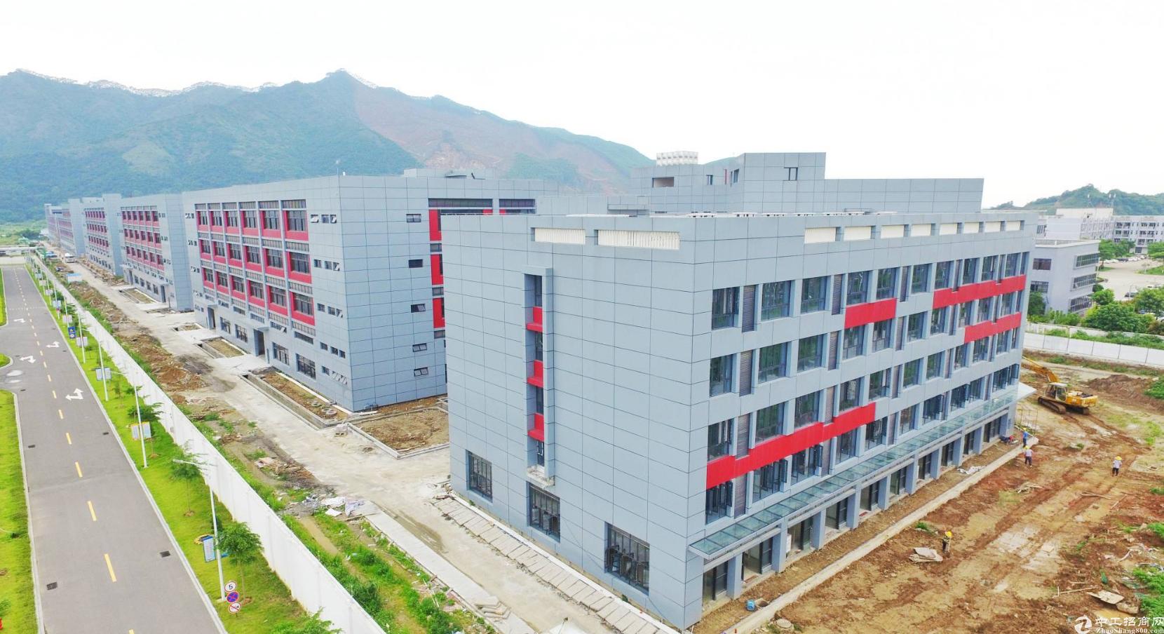 高要金利全新标准厂房出租,层高7米,前店后厂,深圳管理-图2