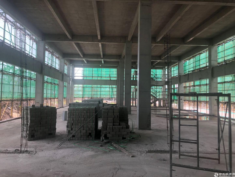出售湖州独栋二层厂房面积2000方,首付两成,首层高9m-图4