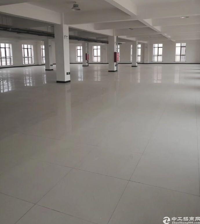 新郑临街独栋厂房出售,可分割,带院子,配独立电梯
