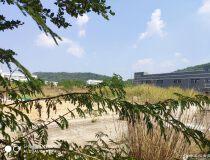 广州新塘主干道国有工业官网3150平米低价出售