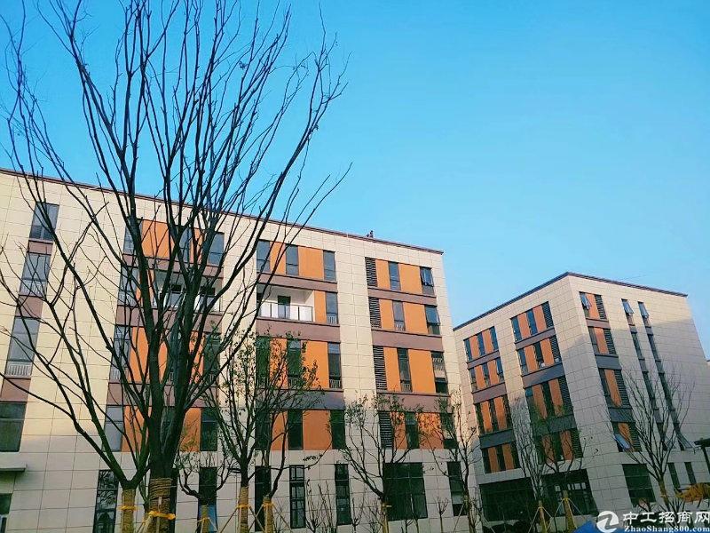天桥区桑梓店梓东大道4000平独栋厂房出售可分割-图5